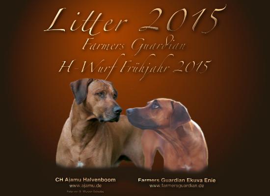 Litter 2015